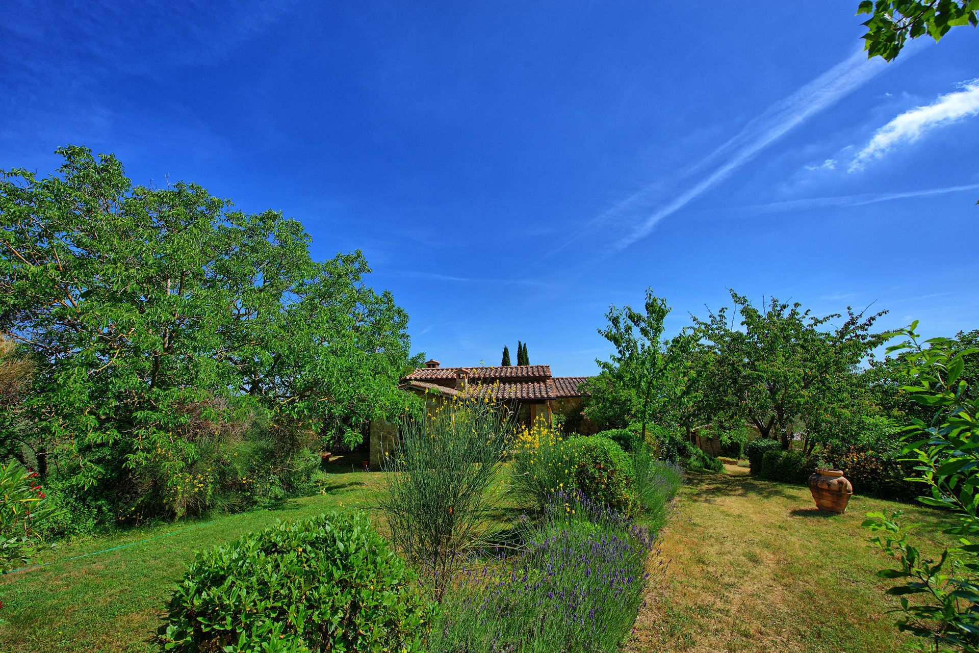 Villa Sarteano - Country Villa With Swimming Pool in Orcia Valley, Tuscany